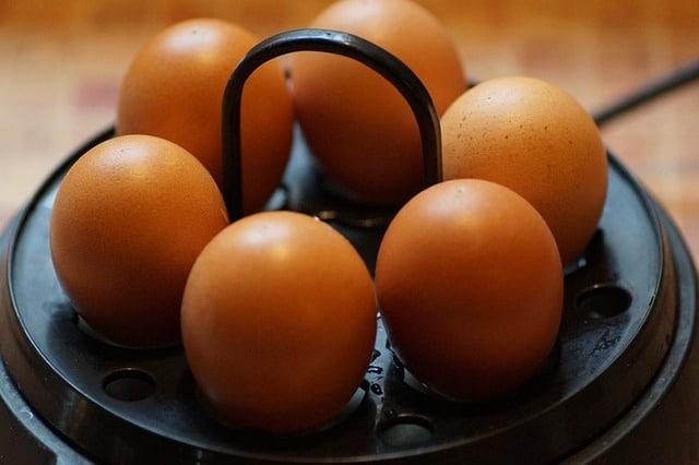 Eierkocher Test und Vergleich